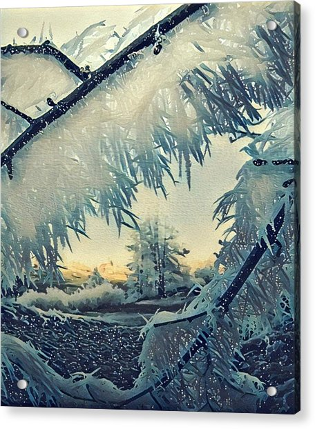 Acrylic Print featuring the photograph Winter Magic by Colette V Hera Guggenheim