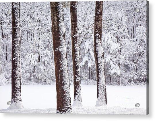 Winter On Paradise Pond Acrylic Print