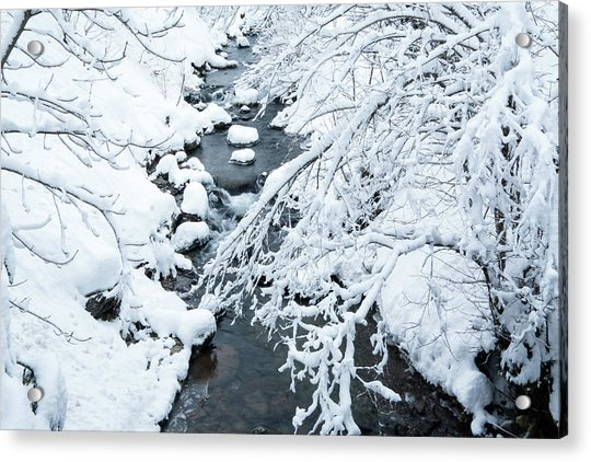 Winters Creek- Acrylic Print