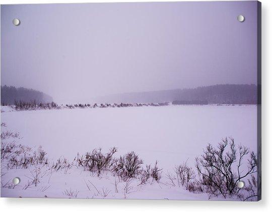 Winter's Desolation Acrylic Print