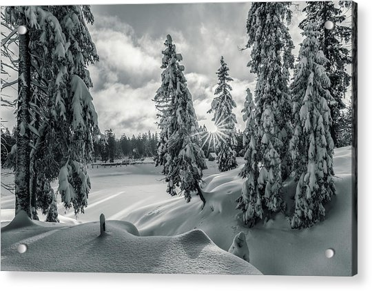 Winter Wonderland Harz In Monochrome Acrylic Print