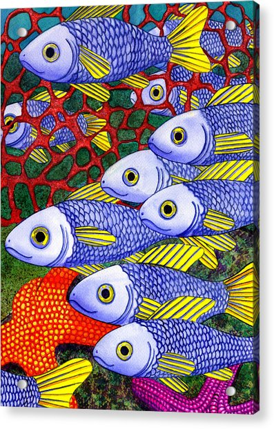 Yellow Fins Acrylic Print