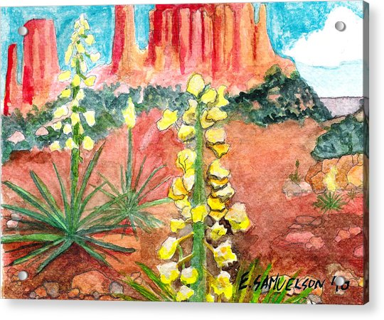 Yucca In Monument Valley Acrylic Print