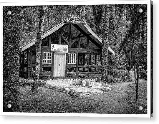 Zarabatana-bosque Do Silencio-campos Do Jordao-sp Acrylic Print