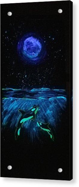 Moon Lit Orcas Acrylic Print