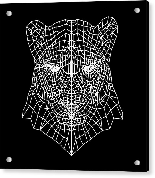 Night Panther  Acrylic Print