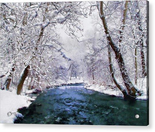 Winter White Acrylic Print