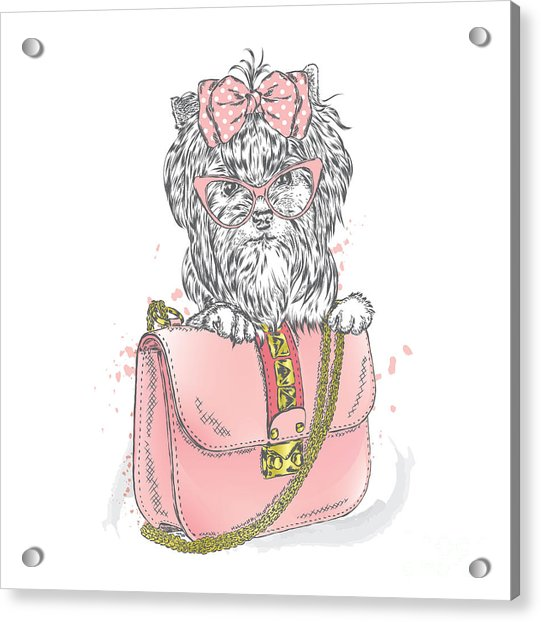 A Beautiful Dog And Beautiful Handbag Acrylic Print
