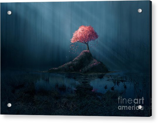A Single Pink Tree In A Dark Blue Acrylic Print