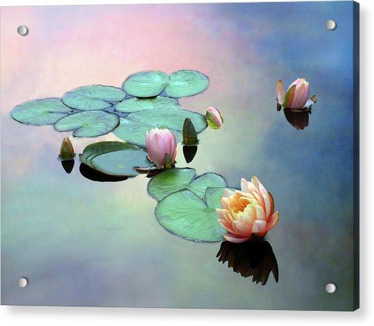 Afloat Acrylic Print