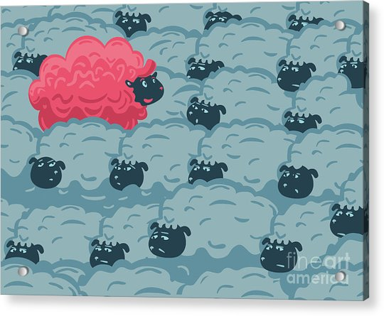 Against The Crowd. One Pink Sheep In Acrylic Print