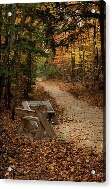 Autumn Meetup Acrylic Print