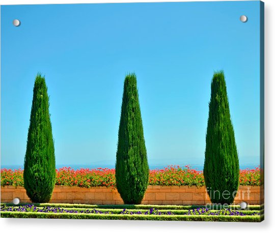 Beautiful Trees And Flowers In The Acrylic Print