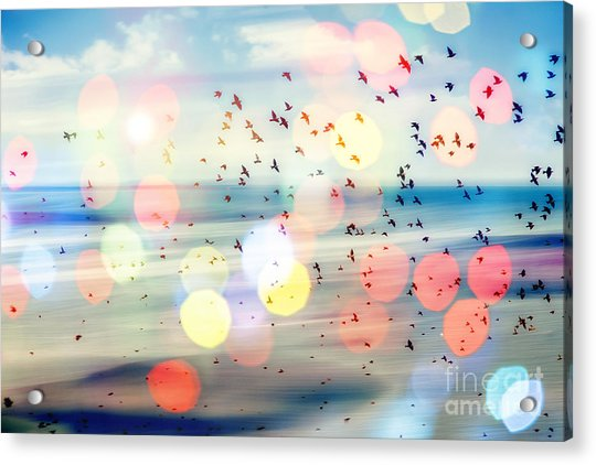 Birds Flying And Abstract Sky ,spring Acrylic Print