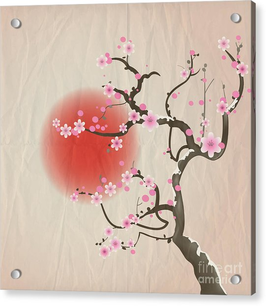 Bough Of A Cherry Blossom Tree Against Acrylic Print