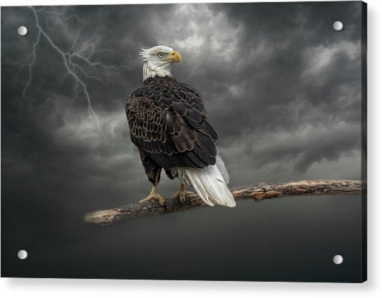 Braving The Storm Acrylic Print