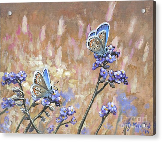 Butterfly Meadow - Part 3 Acrylic Print