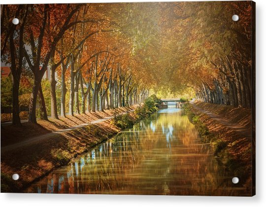 Canal De Brienne Toulouse France In Autumn  Acrylic Print