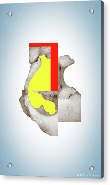 Cinerealism - Surreal Abstract Bone Collage And Geometry Acrylic Print