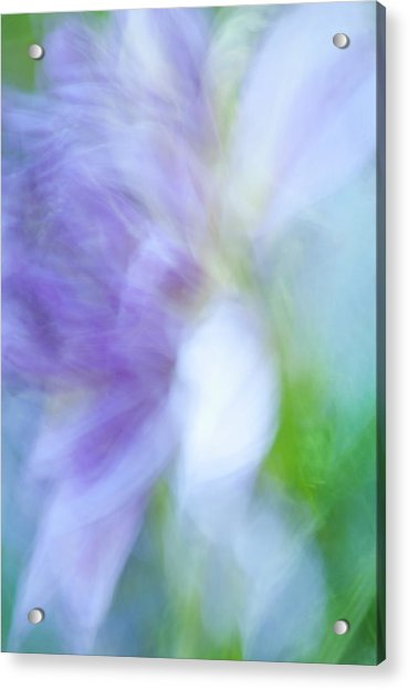 Dancing Angel Acrylic Print