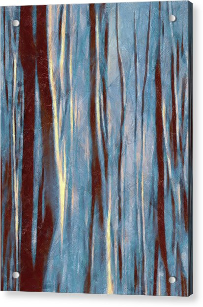 Dawn In The Winter Forest - Landscape Mood Lighting Acrylic Print