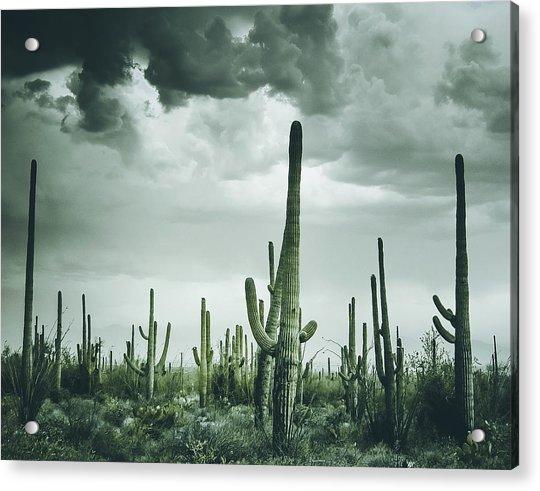 Desert Storm In Arizona Acrylic Print