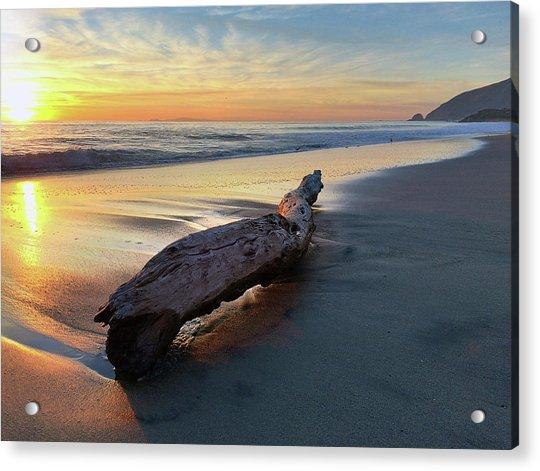 Drift Wood At Sunset II Acrylic Print