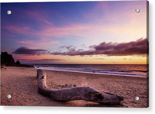 Driftwood At Sunset Acrylic Print