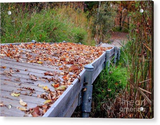 Fall Boardwalk Acrylic Print