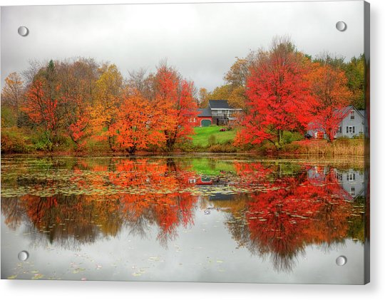 Fall Foliage In Rural New Hampshire Acrylic Print