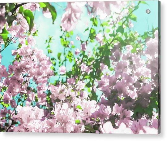 Floral Dreams V Acrylic Print