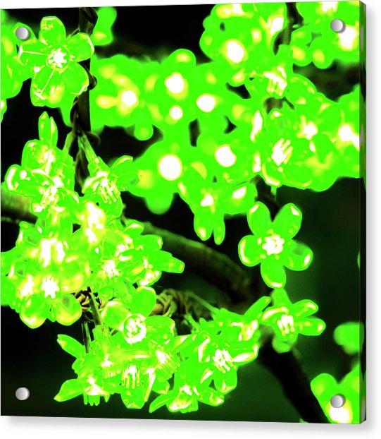 Flower Lights 7 Acrylic Print