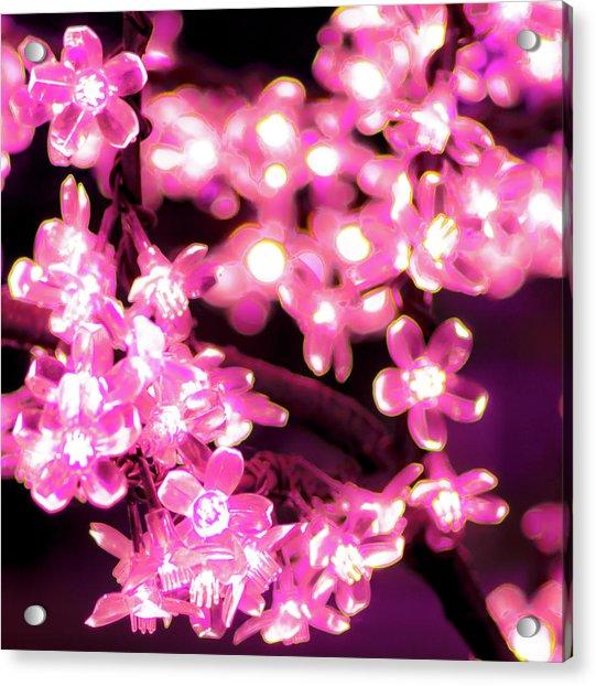 Flower Lights 9 Acrylic Print