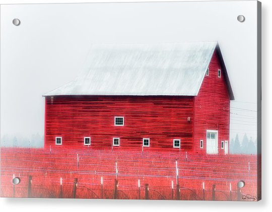 Foggy Country Scene Acrylic Print