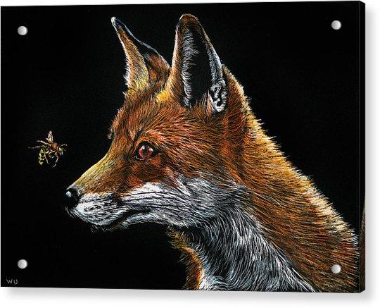 Fox And Hornet Acrylic Print