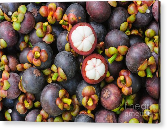 Fresh Organic Mangosteen Thai Fruit In Acrylic Print