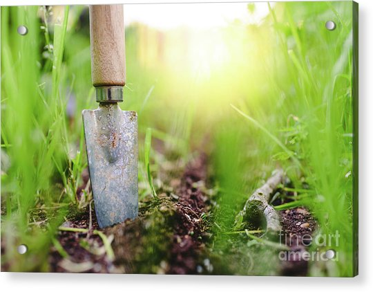 Gardening Shovel In An Orchard During The Gardener's Rest Acrylic Print