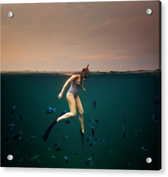 Girl Snorkelling Acrylic Print