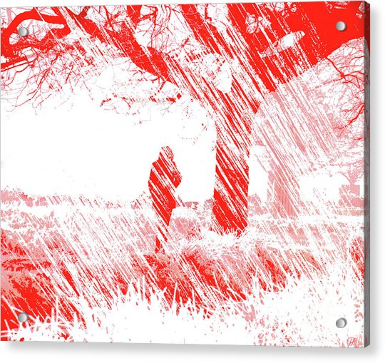 Icy Shards Fall On Setttled Snow Acrylic Print