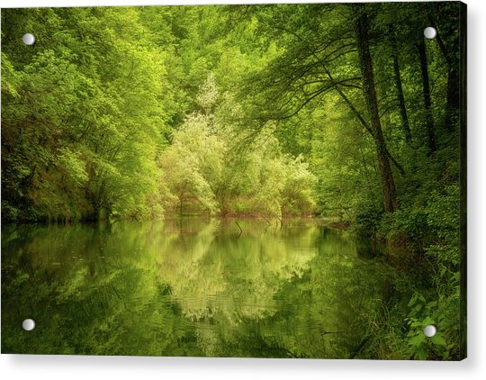 Acrylic Print featuring the photograph In The Heart Of Nature by Mirko Chessari