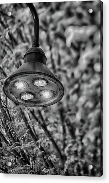 Lights In Town Acrylic Print