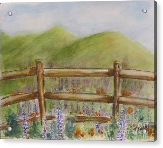 Lupines With A Side Of Poppies Acrylic Print