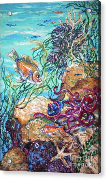 Maho Bay Left Acrylic Print