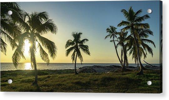 Mexico Palm Tree Sunrise Acrylic Print