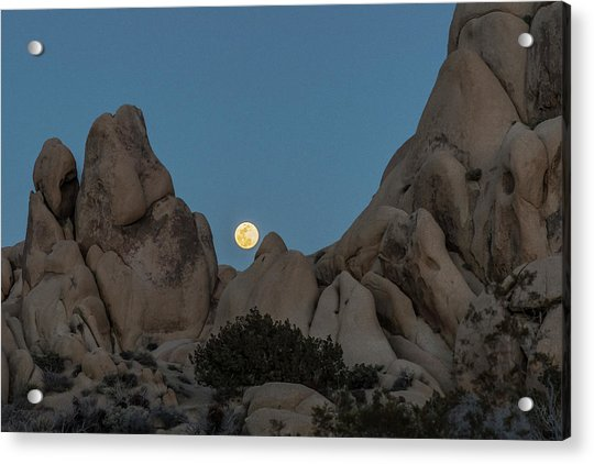 Moonrise In The Sight Acrylic Print