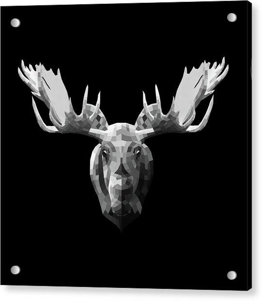 Night Moose Acrylic Print