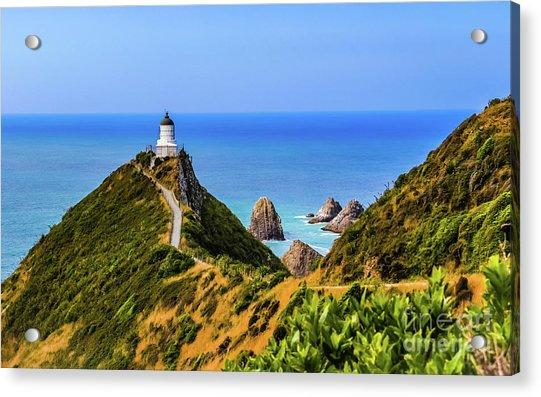 Nugget Point Lighthouse, New Zealand Acrylic Print