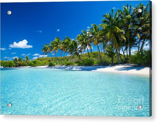 Palm And Tropical Beach Acrylic Print by Akugasahagy