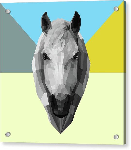 Party Horse Acrylic Print
