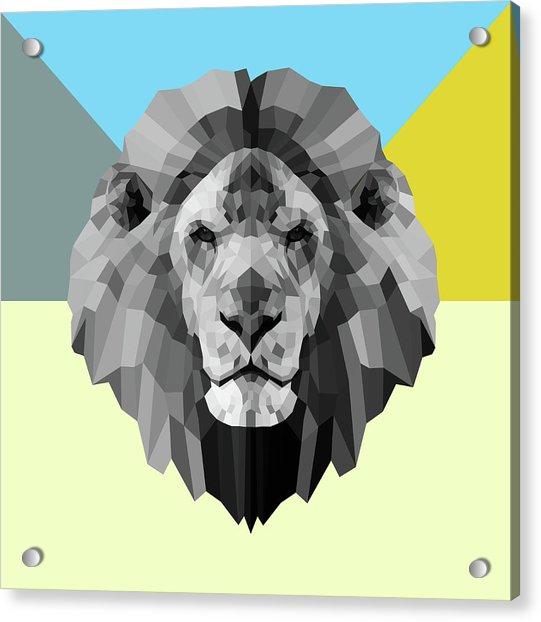 Party Lion Acrylic Print